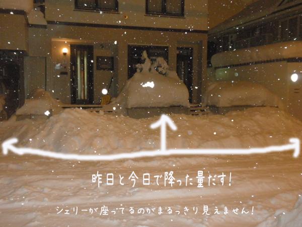 genkanyuki.jpg