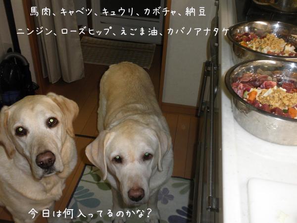 gohan1_20121208001257.jpg