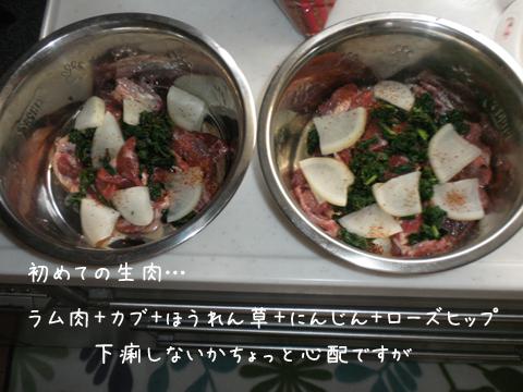 gohan_20120729213450.jpg
