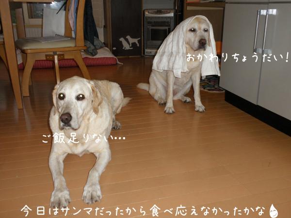 gohan_20120915201541.jpg