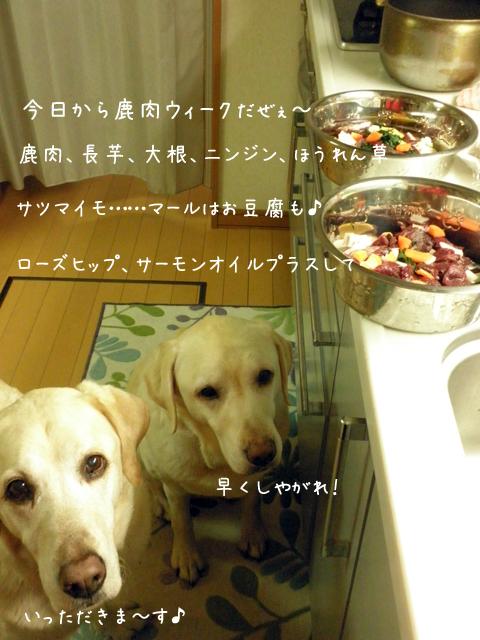 gohan_20121222195609.jpg