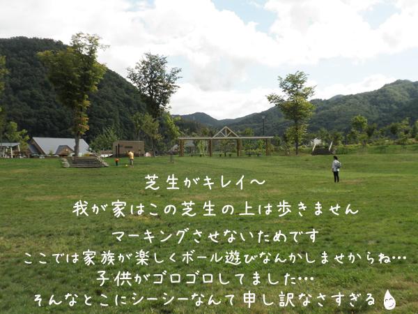goten1_20120926210226.jpg