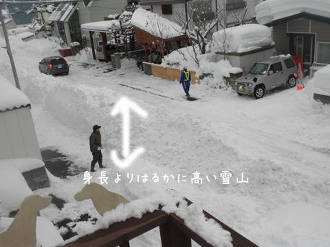 haisetu2.jpg