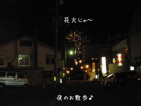hanabi_20120615123225.jpg