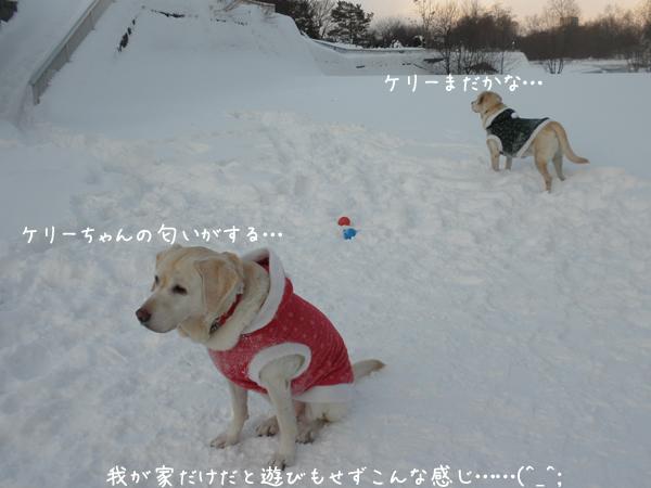 hiroba1_20121220213617.jpg