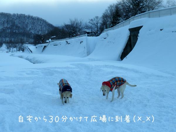 hiroba1_20121226220420.jpg