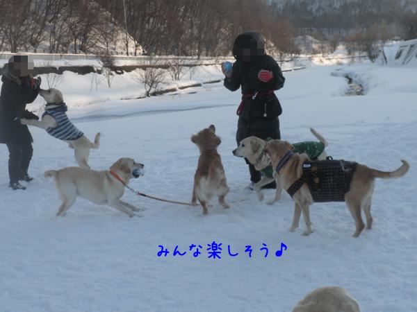 hiroba1_20130113200327.jpg