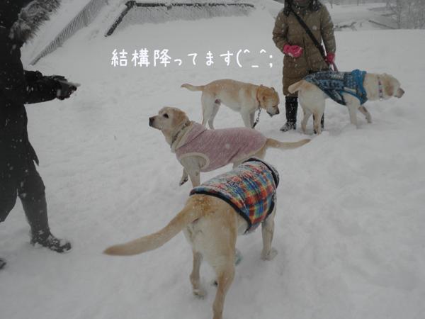hiroba1_20130214212950.jpg