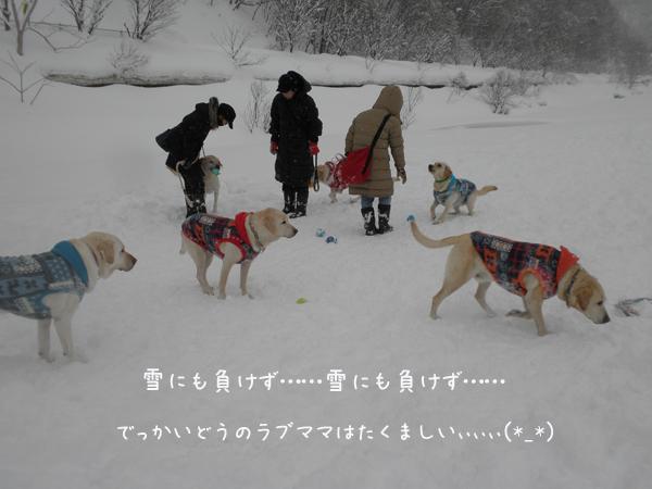 hiroba1_20130224185928.jpg