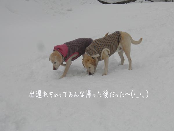 hiroba1_20130227201616.jpg