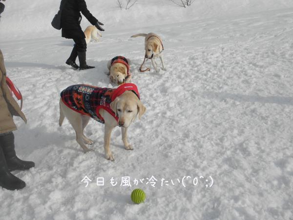 hiroba1_20130306214856.jpg