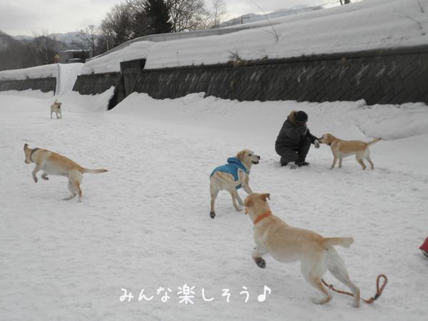 hiroba1_20130317195607.jpg