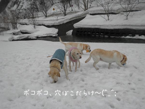 hiroba1_20130318212721.jpg