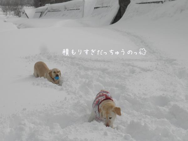 hiroba2_20130309224343.jpg