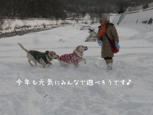 hiroba3_20121202200055.jpg