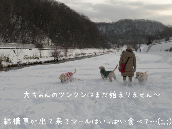 hiroba4_20121202200101.jpg