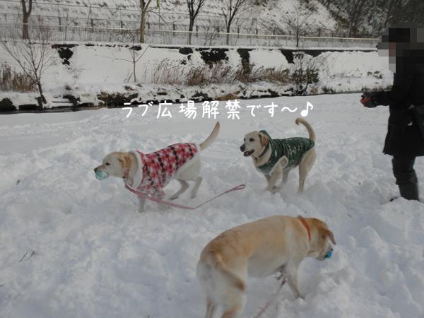 hiroba_20121202200041.jpg