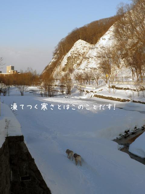 hiroba_20130103203408.jpg