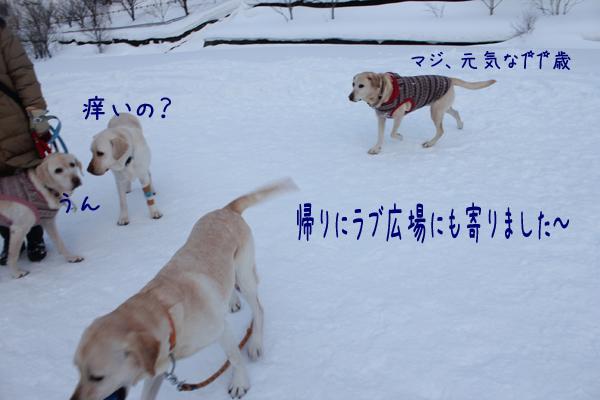 hiroba_20130131203928.jpg