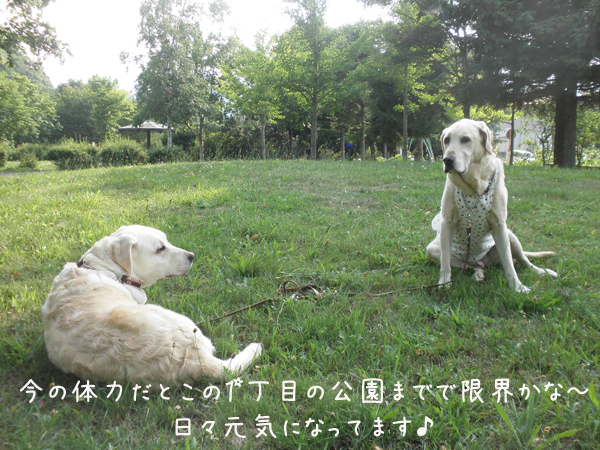 hutari2_20120721212423.jpg