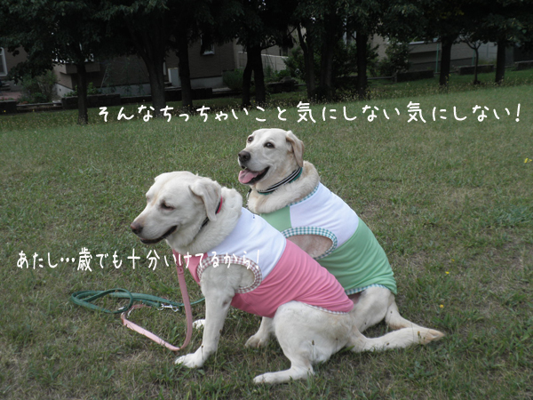 hutari_20120804213240.jpg