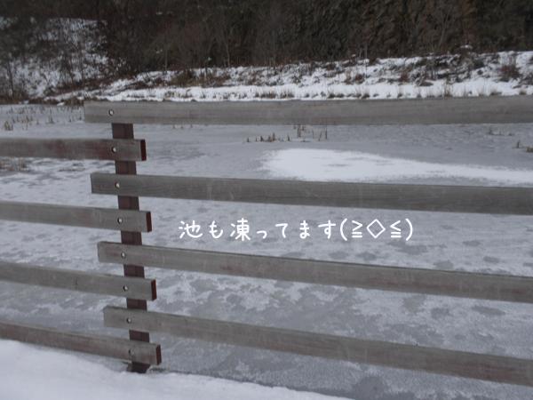 ike_20121129212557.jpg