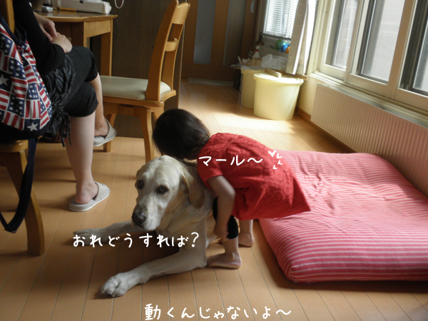 j1_20120705214213.jpg