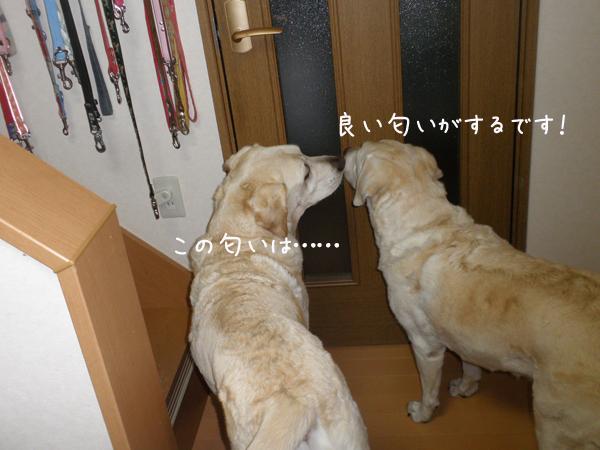 j1_20120924195937.jpg