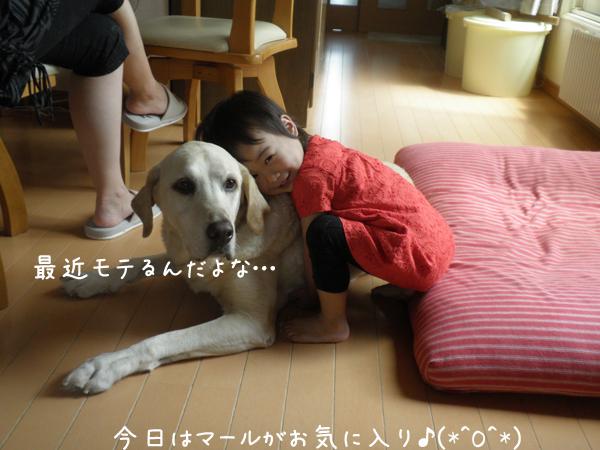 j2_20120705214213.jpg