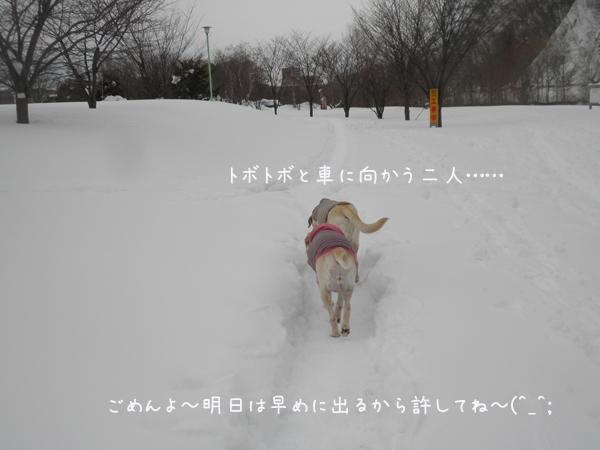 kaerimiti_20130227201624.jpg