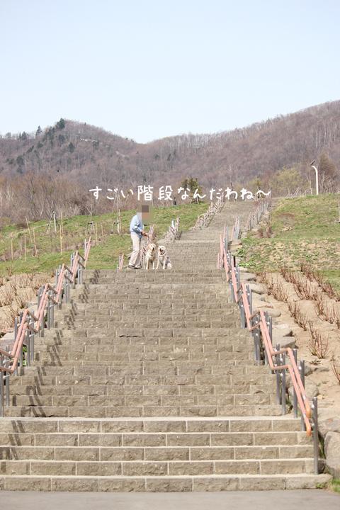 kaidan_20120429221831.jpg