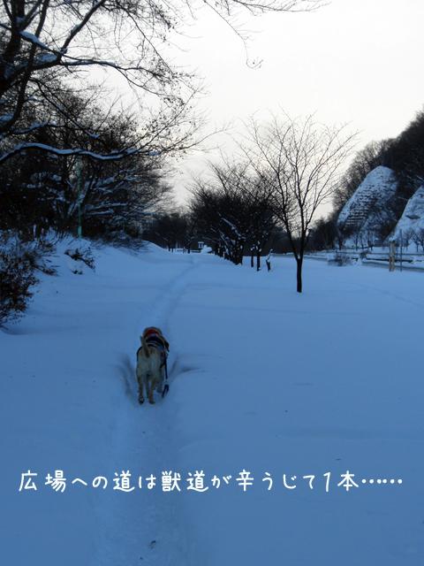 kasenziki_20121226221158.jpg