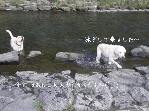 kawa1_20120918234004.jpg