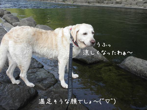 kawa2_20120918234003.jpg