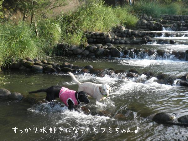kawa3_20120814212212.jpg