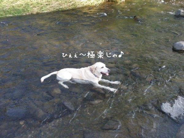 kawa3_20120914222155.jpg
