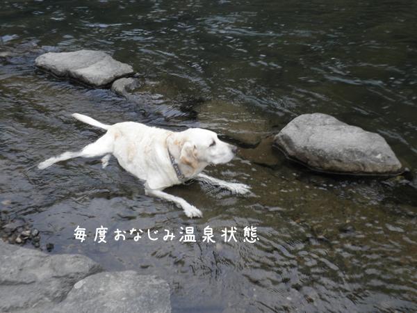 kawa3_20120915195949.jpg