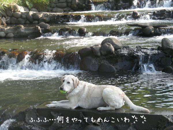 kawamaru.jpg