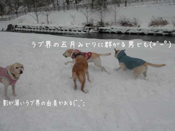 keri_20121209213018.jpg