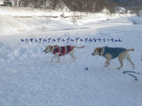 keri_20130226195852.jpg