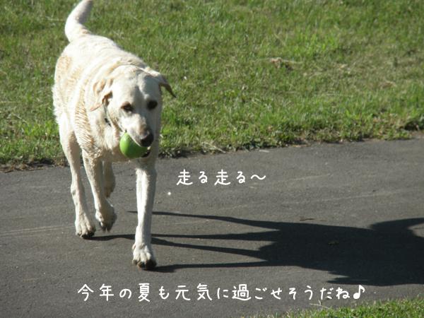 kouen2_20120626185839.jpg