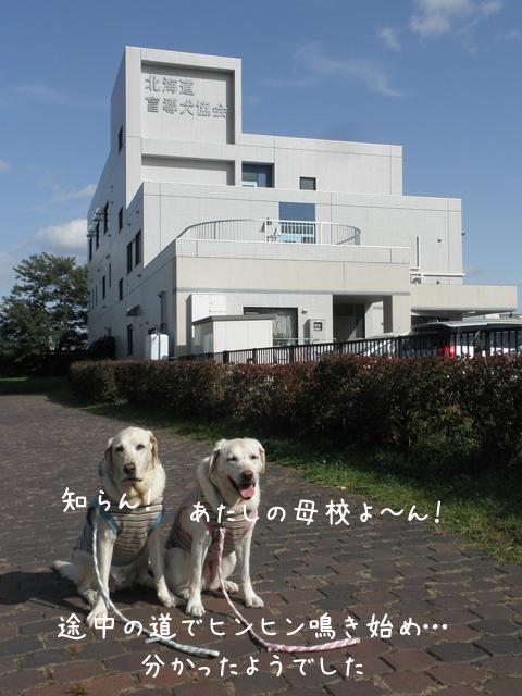 kyoukai1_20121016215210.jpg