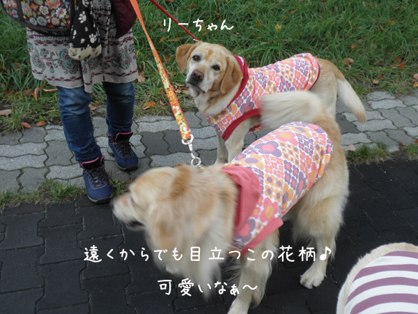 lee_20121019221138.jpg