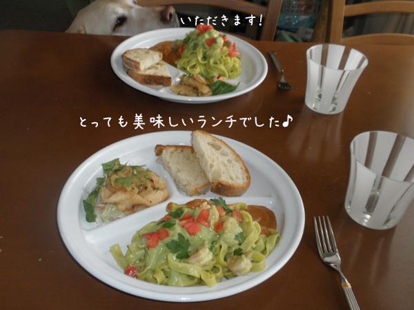 lunch_20130310223423.jpg