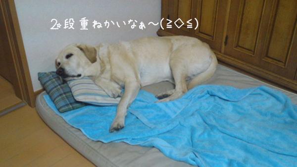 makura_20120618222837.jpg