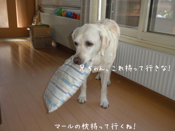 makura_20120717225407.jpg