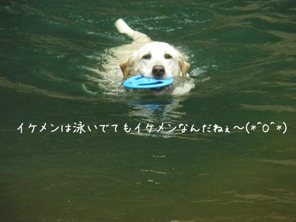 maru1_20120711214724.jpg