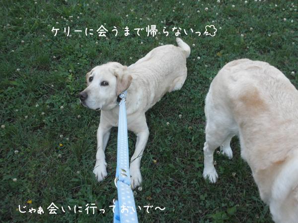 maru1_20120714221614.jpg