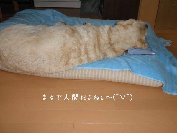 maru1_20121102233631.jpg