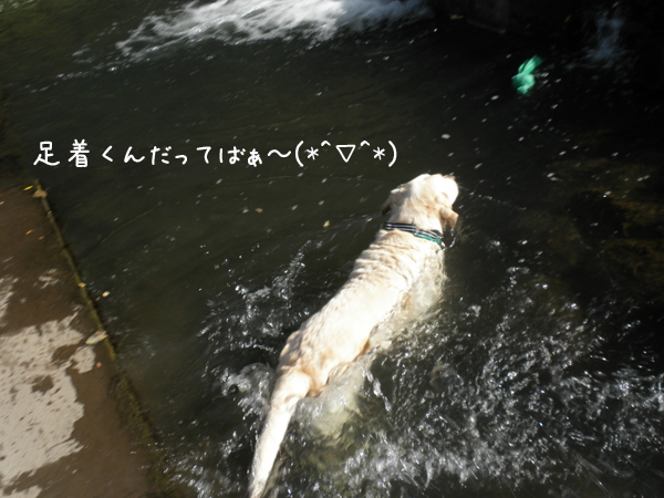 maru2_20120905204513.jpg